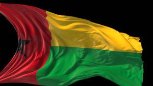 Guinea Flag Pics