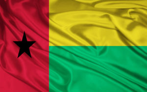 Guinea Flag Pictures