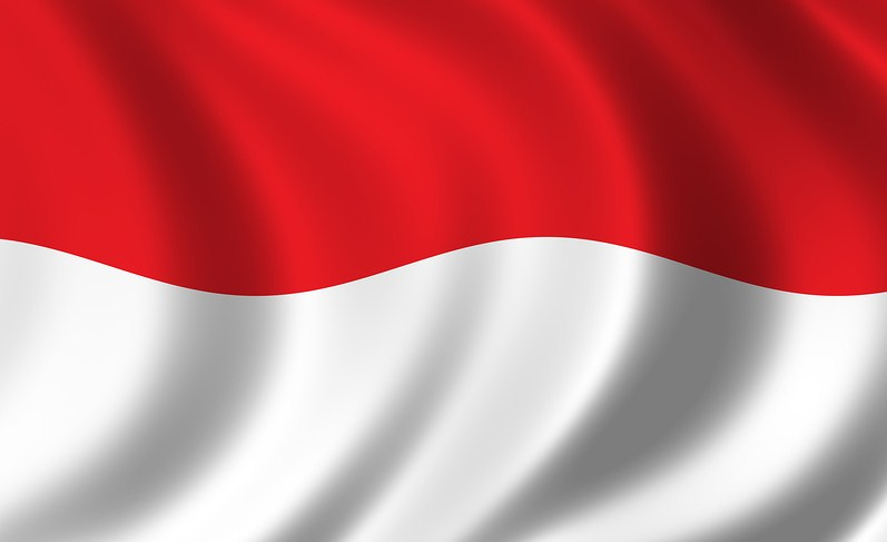 Indonesia Flag Pictures