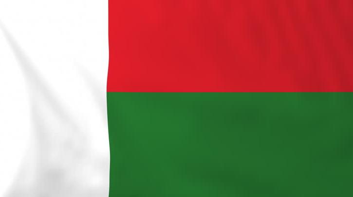 National Flag of Madagascar Pics