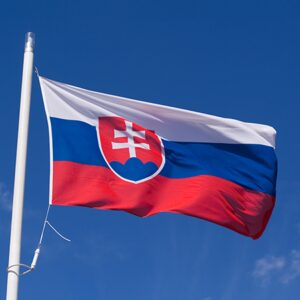 Slovakia Flag Picture