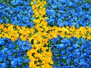 Sweden Flag Pics