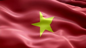 Vietnam Flag Pictures