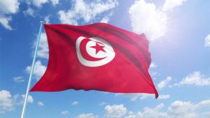 national flag of Tunisia