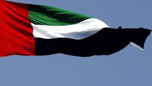 UAE Flag Picture