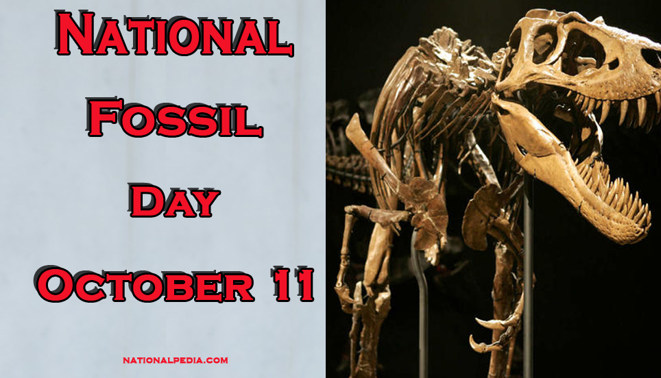 National Fossil Day October 11