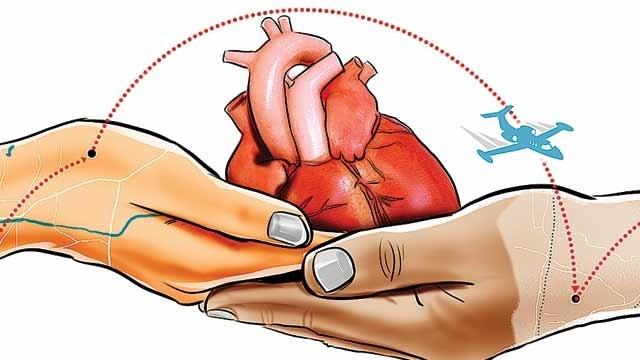 World Day for Organ Donation and Transplantation October 17