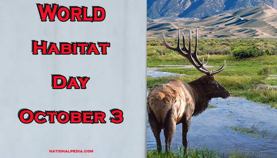 World Habitat Day October 3