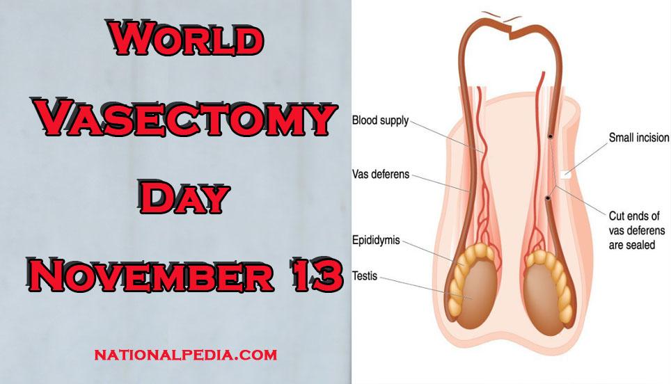World Vasectomy Day November 13