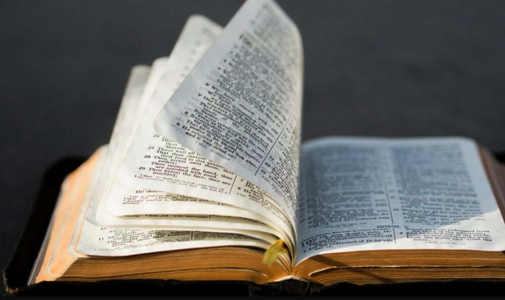 International Day of the Bible November 24