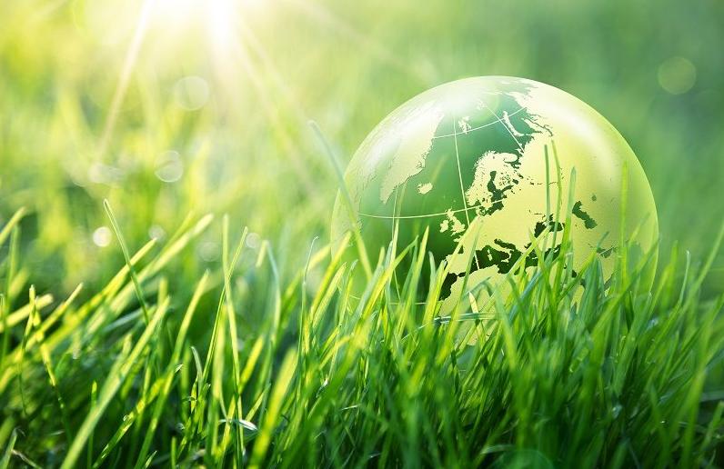 World Environment Day June 05